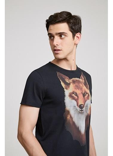 TWN Slim Fit Baskılı T-Shirt Siyah